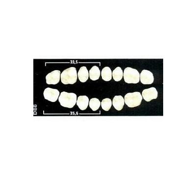 ZUBY GNATHOSTAR  A-D  OD88 A2