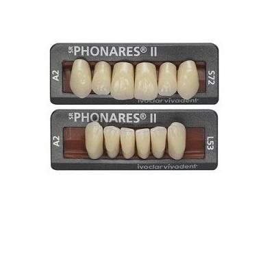 ZUBY SR PHONARES II ANTERIOR L50  BL3  6ks
