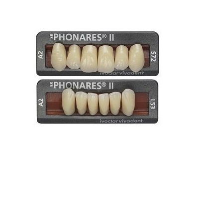 ZUBY SR PHONARES II ANTERIOR B83  D2  6ks