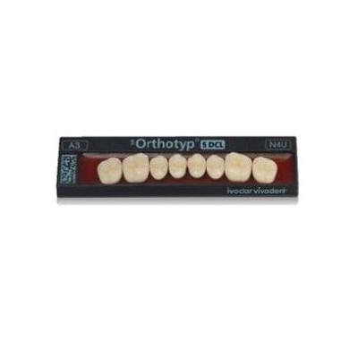 ZUBY SR Orthotyp S DCL D3 N6U horní 8ks